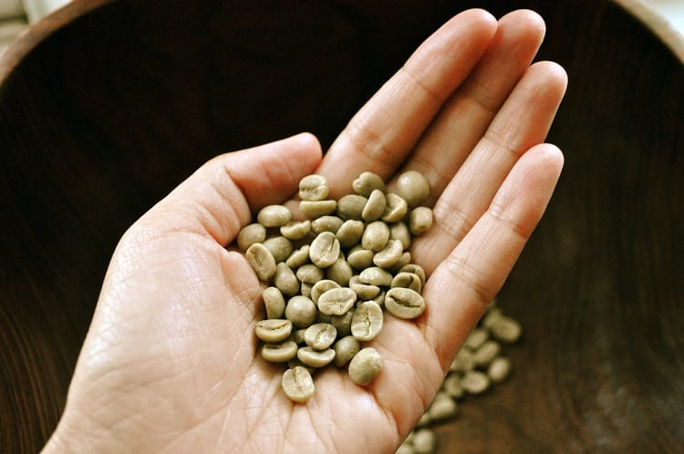 Green Coffee Beans In Hand